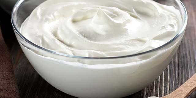 Yogurt and quark powders - Protolac